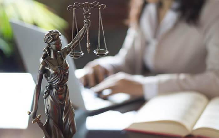 Robinson-Nielsen-Litigation